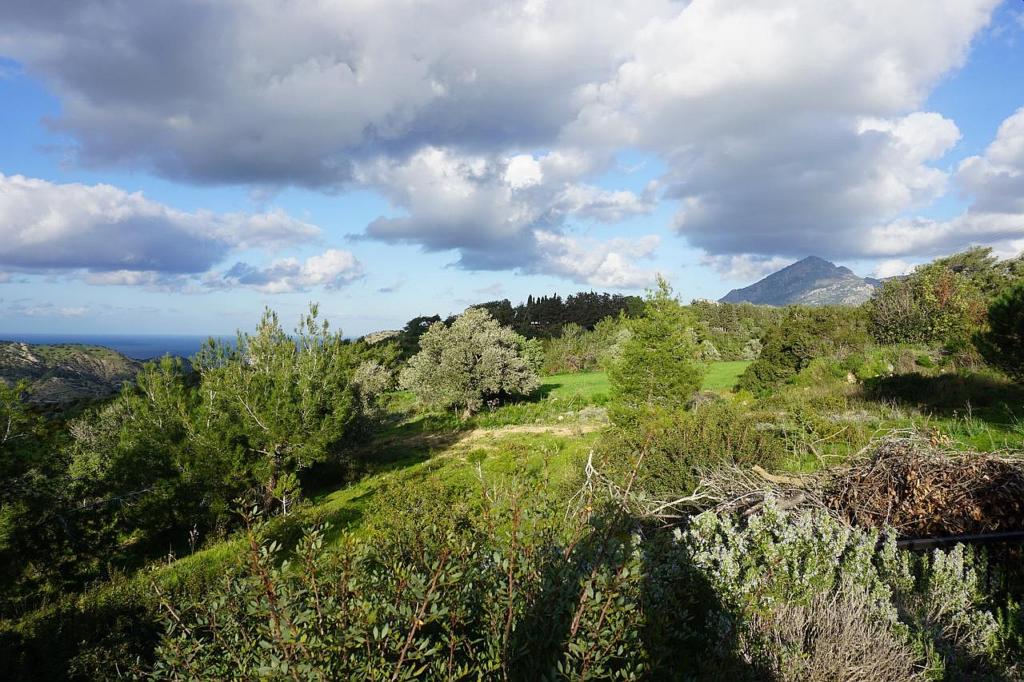 camlibel north cyprus