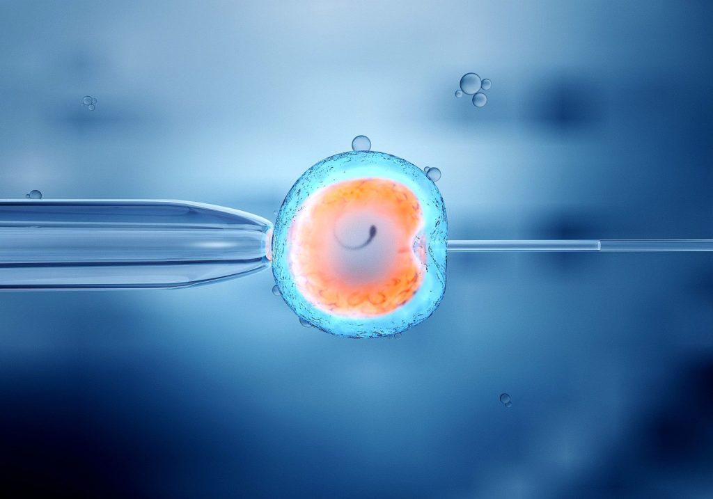 ivf fertility treatment north cyprus